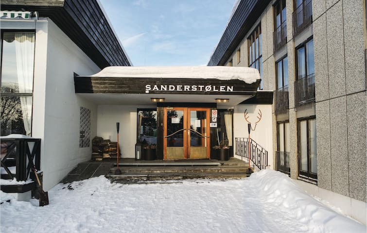Holiday apartment with 1 bedroom on 34 m² in Tisleidalen
