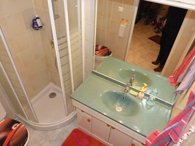 Coin toillettes ,comprenant une douche, un lavabo miroir et un wc le tout  aerer et eclaire par un wasistas