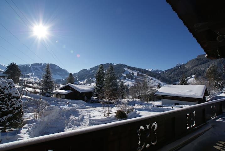 GSTAAD CHALET STUDIO (one or two bed)
