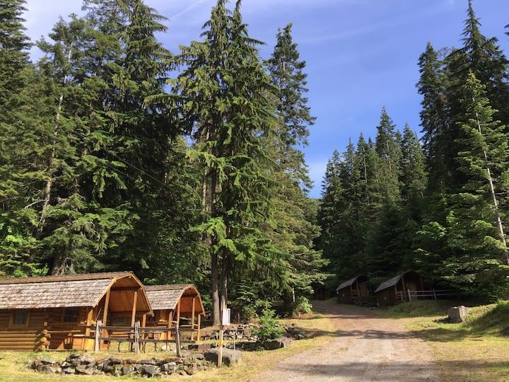 Cozy Rustic Cabin #112 ~ Hillside Vista