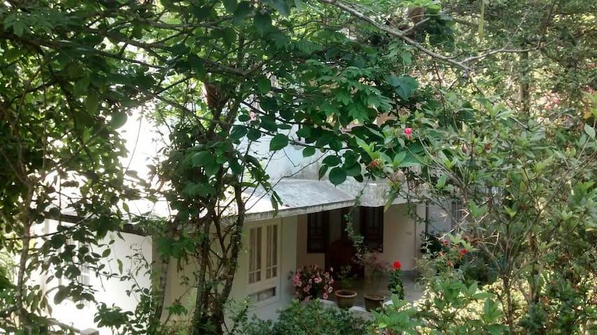 Krishna Kuti 1 - Kalimpong - House