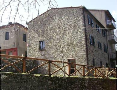 Orma del Lupo Ostello in Pratomagno - Trappola