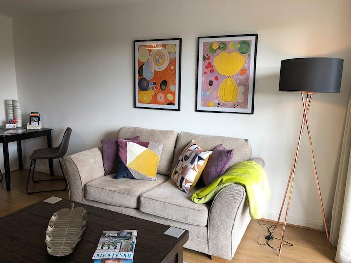 Hansen House 2 Cardiff Apartment /Free Parking