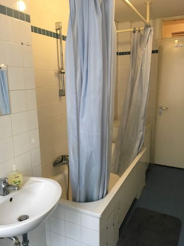 This is the bathroom. You share it with me only. It hasn't been renovated yet.