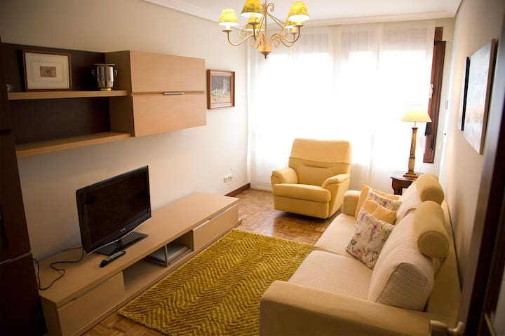 Lovely apartment 10 minutes from downtown Donosti