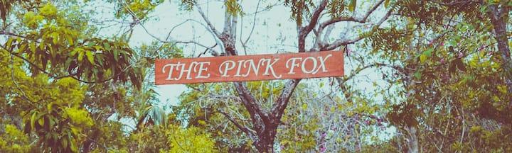 Pink_Fox Malayadiya