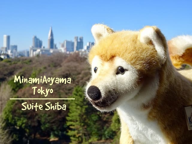 Tokyo Aoyama Shiba Inu Theme Airbnb 4min STA WiFi