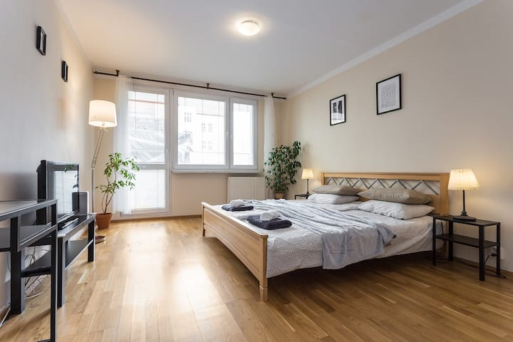 Spacious Flat with Private Parking in Art Quarter
