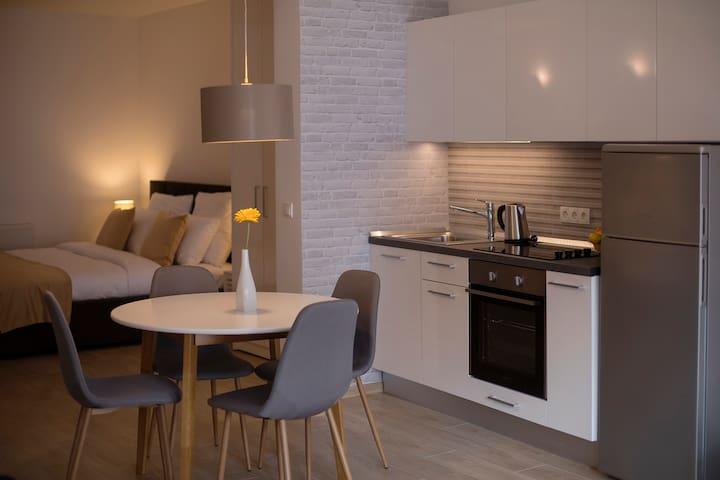 City Center Apartments #1 (studio apartment)