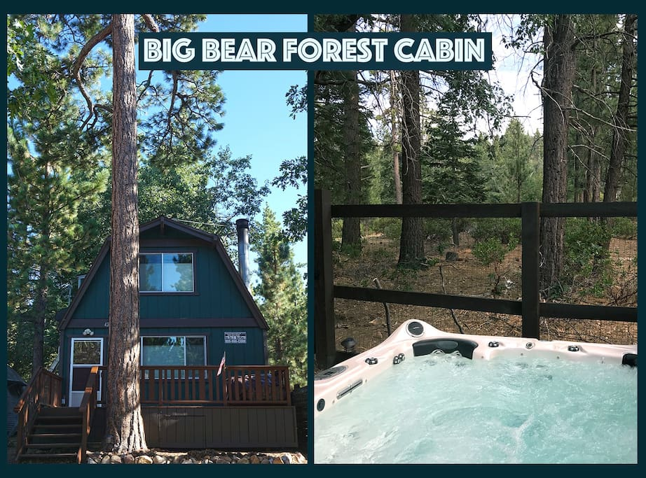Big bear forest cabin cabins for rent in big bear lake for Cabins for rent in big bear lake ca