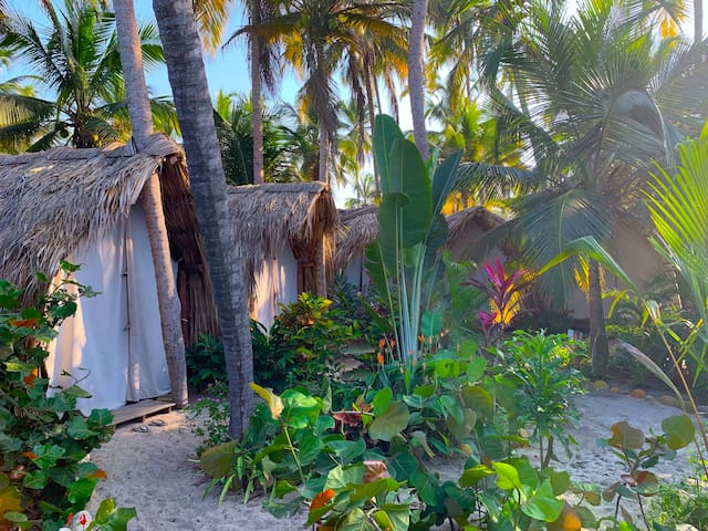 Bohemia Beach | The Jungle Beach Hostel