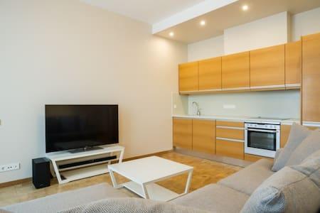Spacious Alberta Square apartment - Riga