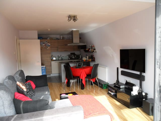 Spacious Luxury Double Room in Bow Road - Londres - Pis