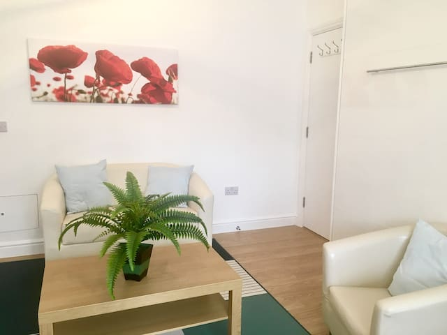 Amazing Brixton flat - 10 mins to Central London