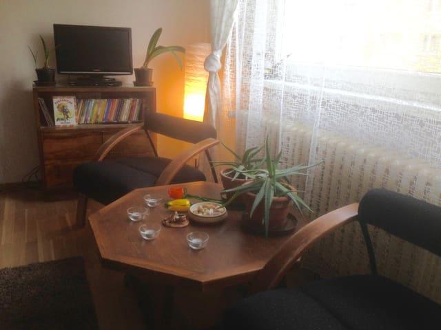 Apartmán U Naší babičky - vítejte v Máchově kraji - Doksy - Appartamento
