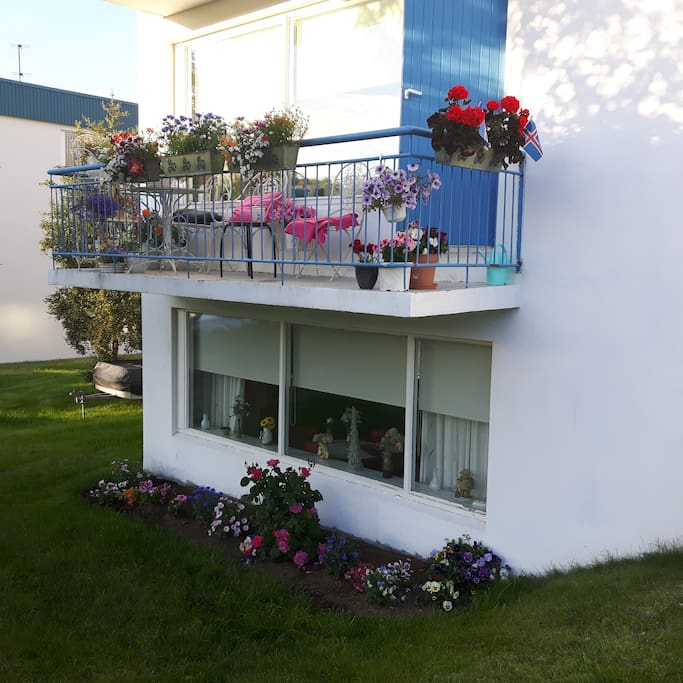 My balcony in end of July
