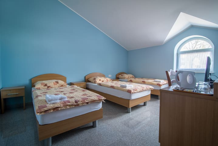 Triple room - Hrpelje - Muu