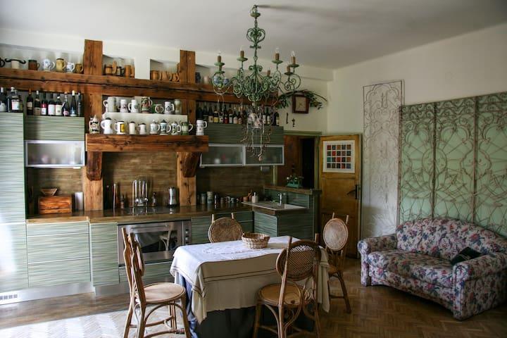 Appartement in an exclusive villa at Gellért hill