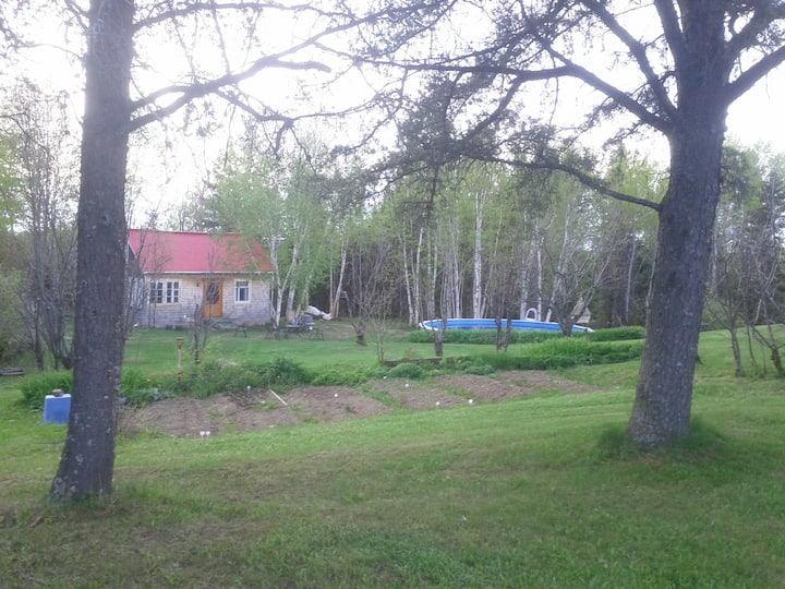 Maisonnette rustique romantique des bois