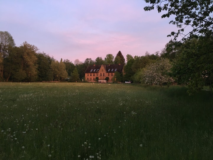 Dachwohnung mit Kamin mitten im Naturschutzgebiet
