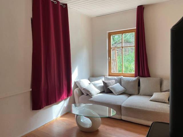 Wohnzimmer mit Sofa als Schlafmöglichkeit
