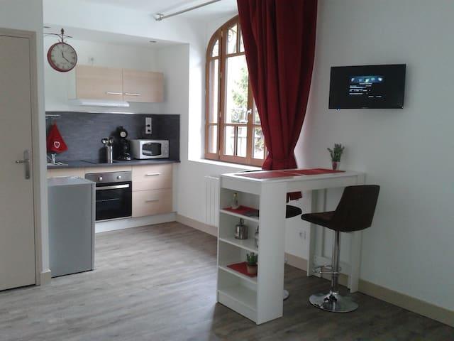 grand studio, quartier historique - Blois - Huoneisto