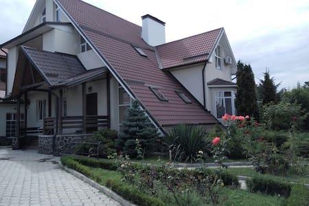 Большой красивый дом в центре города.