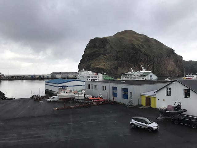 Lovely flat at the harbour in WestmanIslands - DT