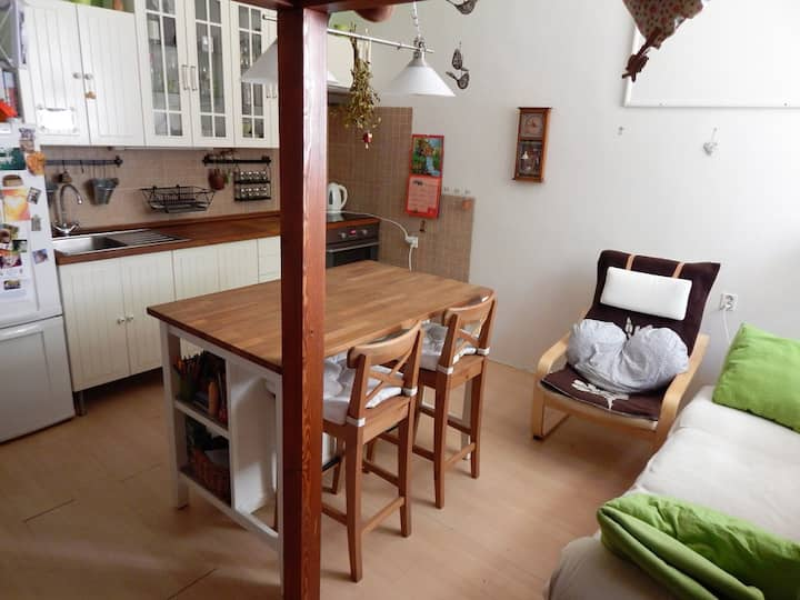 Calm and cosy flat 15 minut from Prague Castle