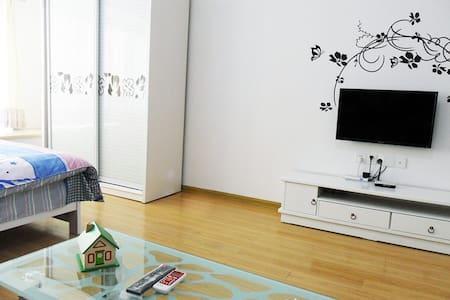 湖南长沙市广电中心(15367820192)国际会展中心附近豪华公寓 - Changsha