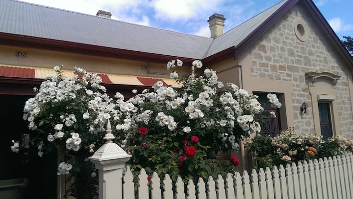 Central Adelaide - a walk through  Botanic Gdns