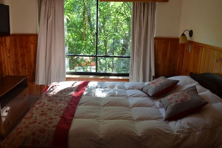 Excellent apartment in pucon