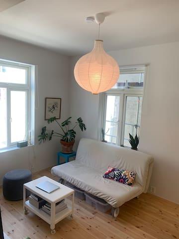 Cosy studio apartment in Møllenberg