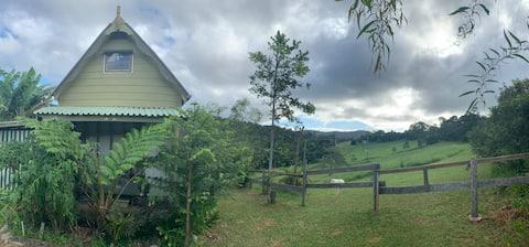Rustic rainforest cottage camp