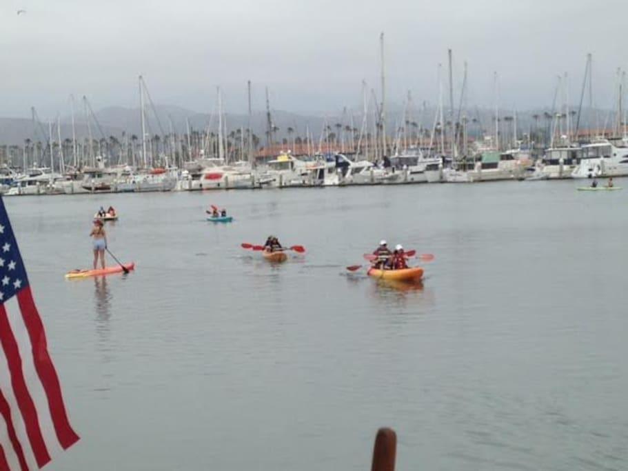 Paddling in the Harbor
