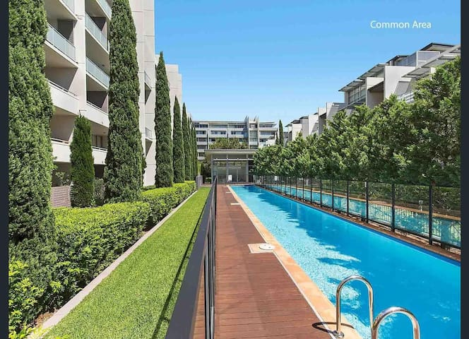 Designer's double room in penthouse with ensuite - Rosebery - Apartment