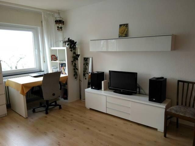 Helles Zimmer 25 m2 mit Balkon und TV  in Freiburg