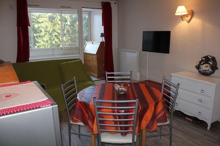 studio au pied des pistes à Corrençon En Vercors - Corrençon-en-Vercors - Wohnung