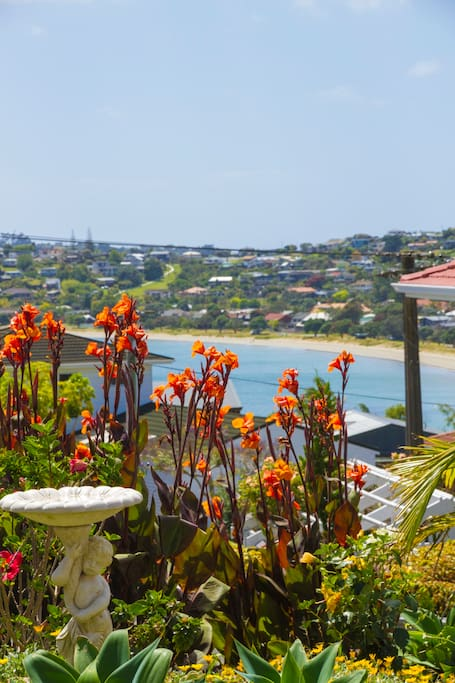 Front garden view to Manly Beach