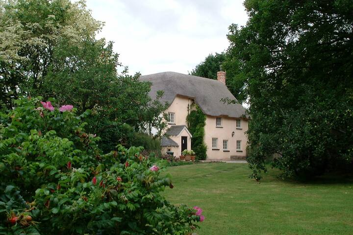 Warm and welcoming B & B - Thorverton - Bed & Breakfast