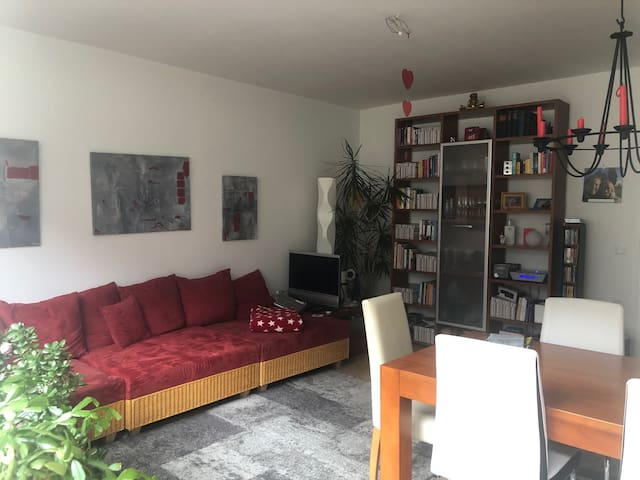 My living room 20 square meters for you
