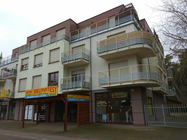 Apartament Sonatka nad morzem w Międzywodziu.