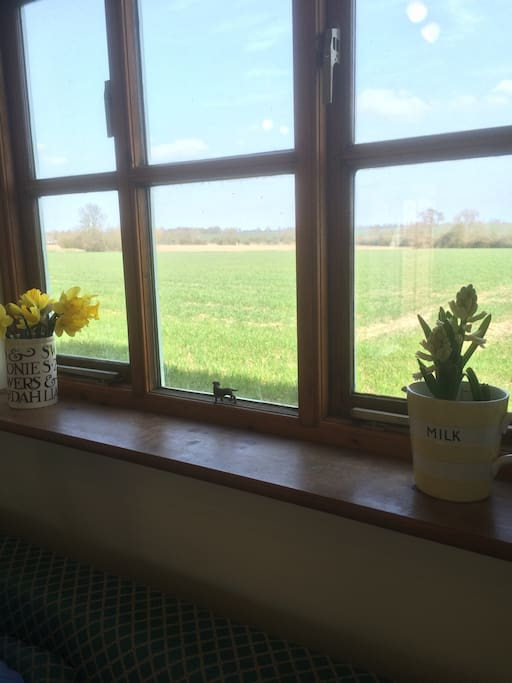 Far reaching views over pristine Norfolk countryside from the kitchen and bedroom windows.
