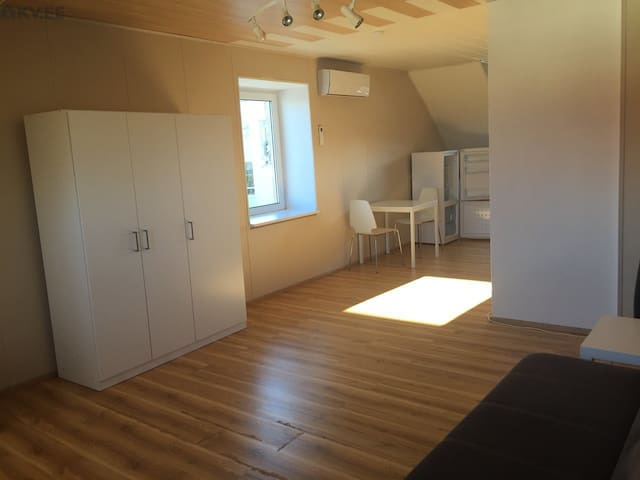 Bright studio rooftop apartment in central Rakvere