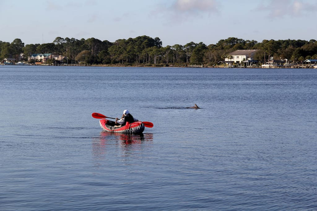 Just steps away (at Grand Lagoon) Kayaking with dolphins