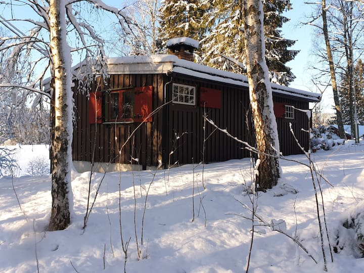Old fasion cabin in the forest.
