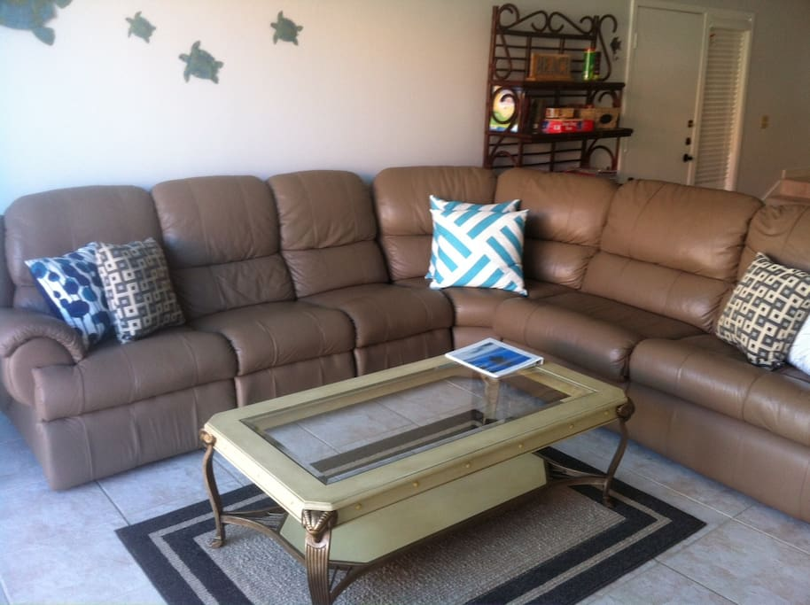 Living room seating and pull out couch