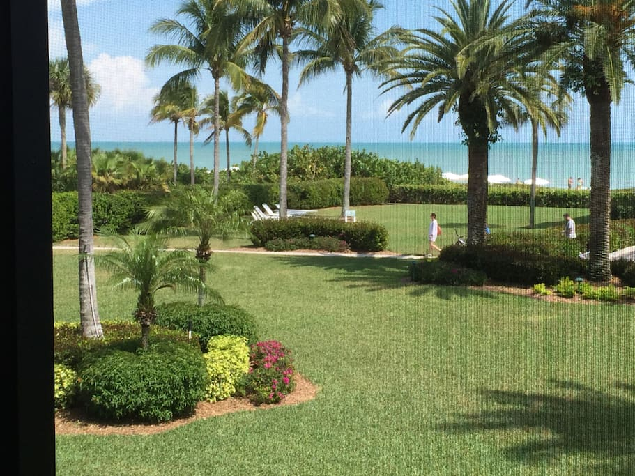 View from your lanai during the day!