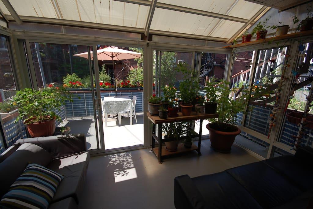 Sun room/veranda