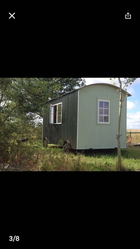 """""""Mallard"""" Shepard's hut at watersedge"""